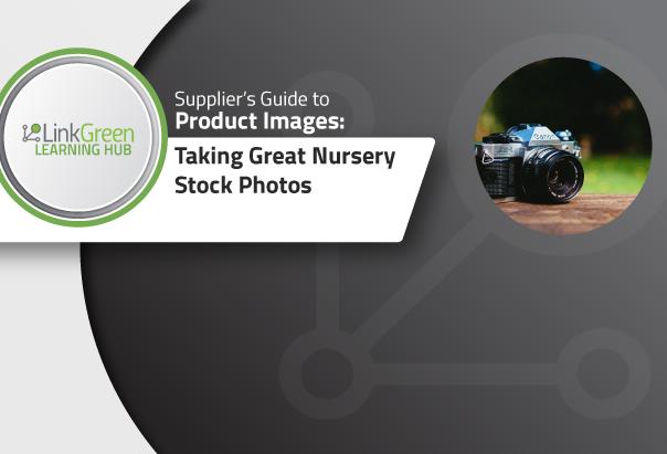 2018.07.17---Taking-Nursery-Stock-Photos.png