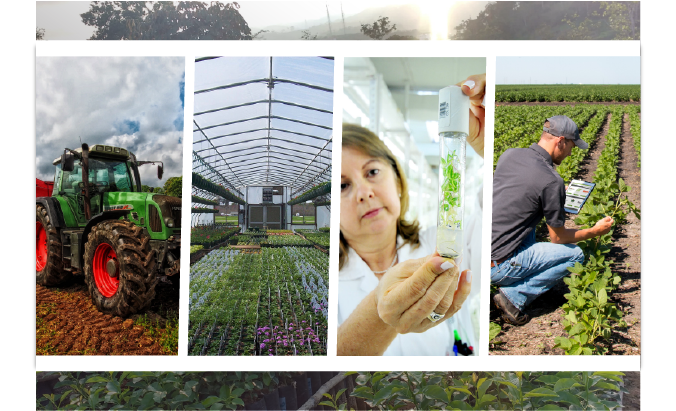 Horticultural technology