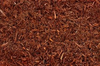 Red Mulch (1).jpg