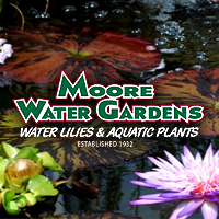 Moore Water Gardens.png
