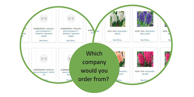 Which Company would you order from_ (1)