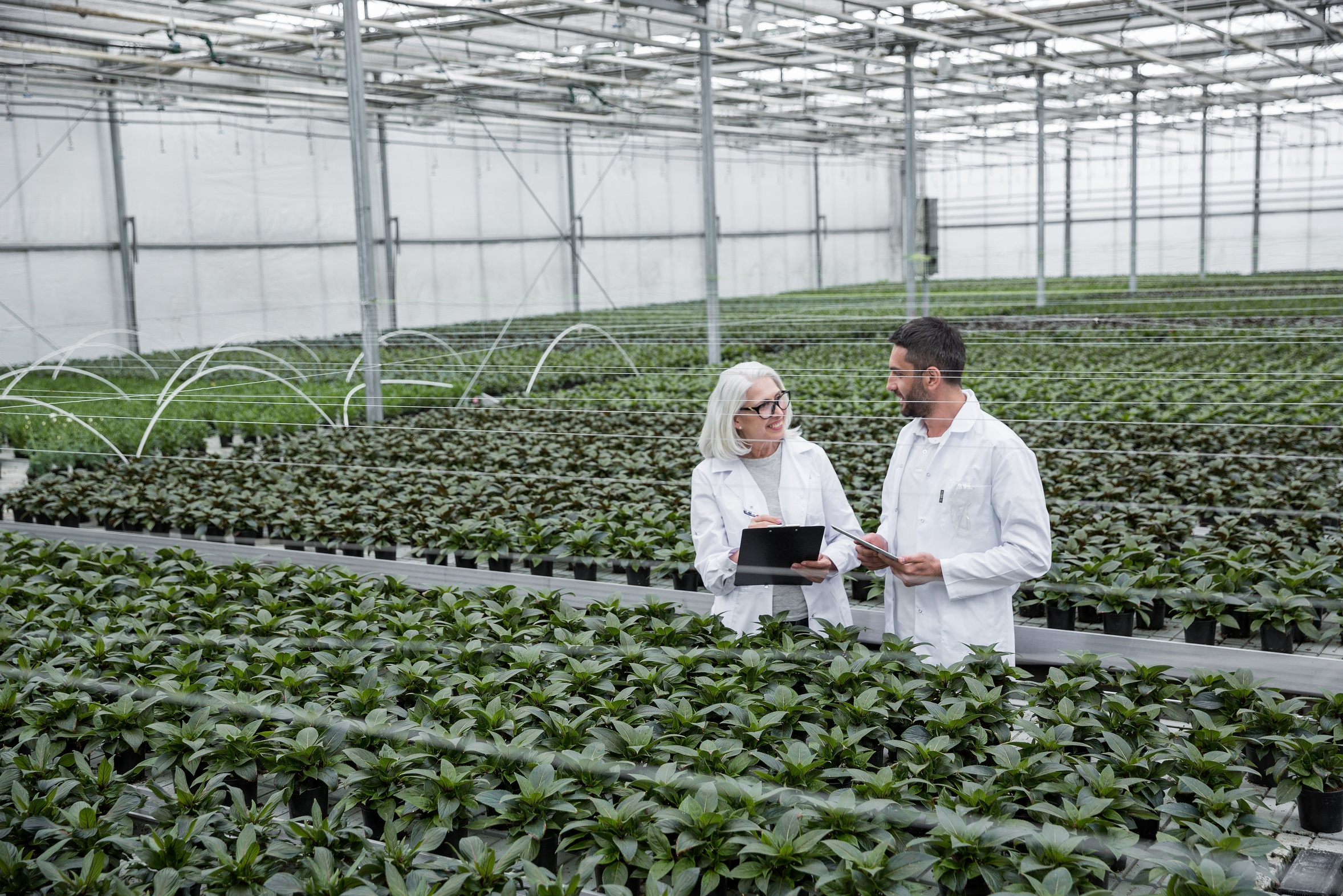 Greenhouse Growers use LinkGreen to sell local produce