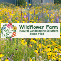 wildflower farm online ordering